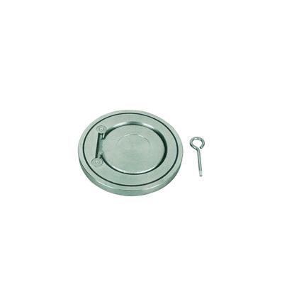 WTSCV DN100 PN10 Поворотный обратный клапан