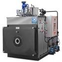 ICI Caldaie BNX 2000 Паровой котел низкого давления 0,7 Бар