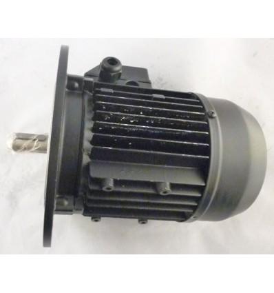 Электродвигатель Simel 5/3038 IE2